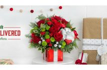teleflora-christmas-featured