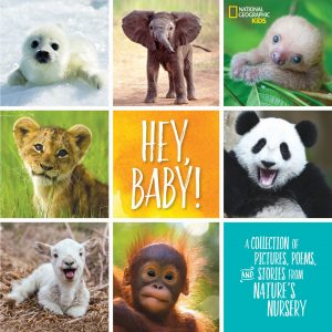 Hey Baby from National Geographic