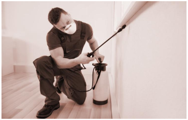 How To Get Serious About Commercial Or Residential Pest Control