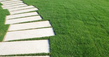 5 Tips To Keeping Your Lawn Green